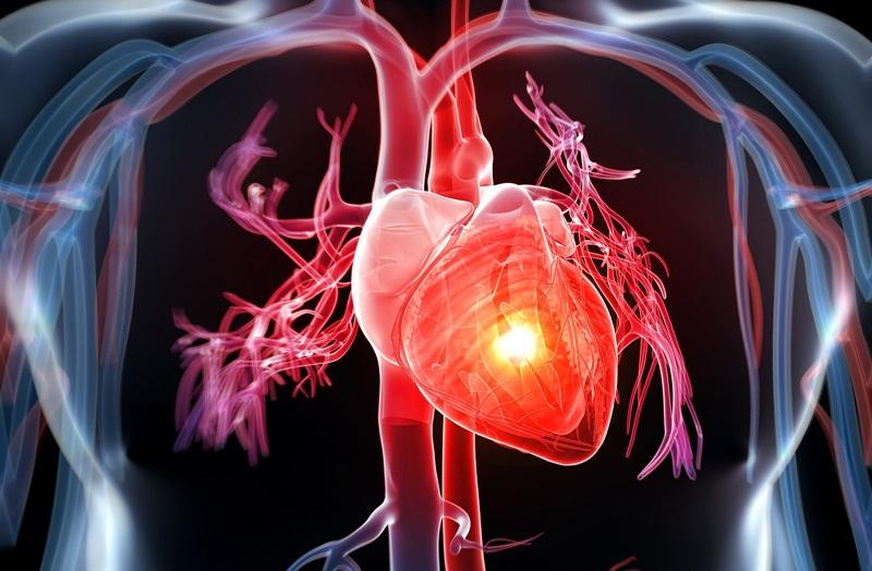 Kiểm tra sức khỏe tim mạch cực kỳ đơn giản tại nhà chỉ với 5 phút