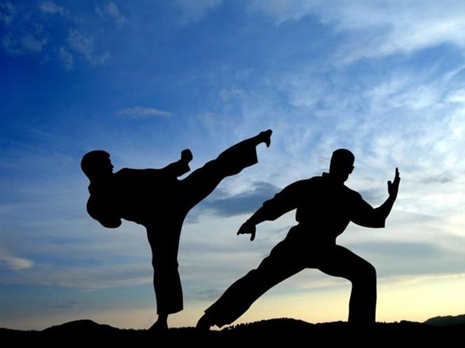 Tập luyện các môn võ thuật