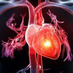 TOP 9 dấu hiệu thường gặp của bệnh tim mạch mà bạn cần chú ý